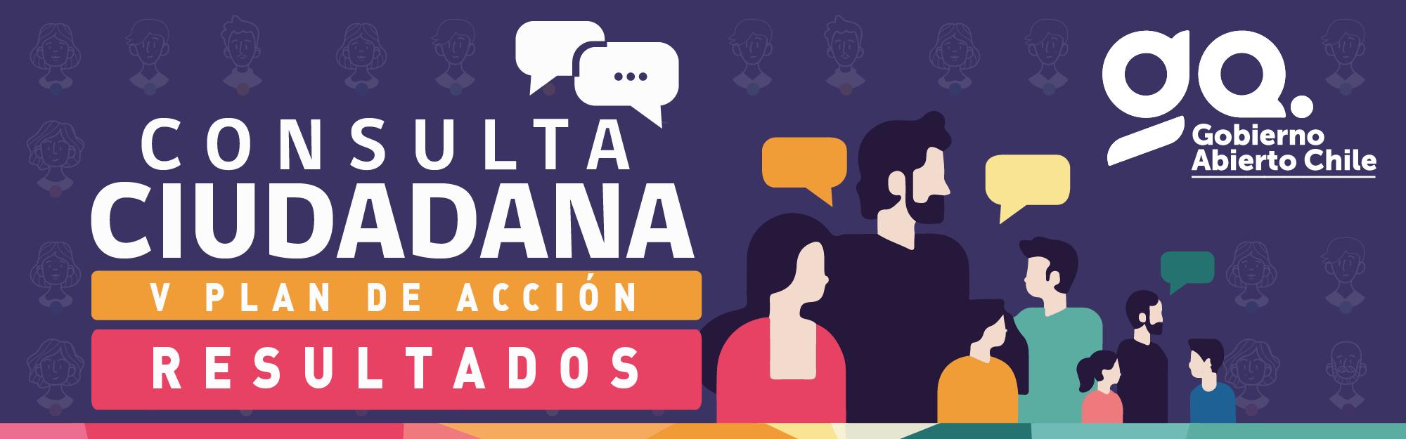 Banner Resultados Consulta Pública